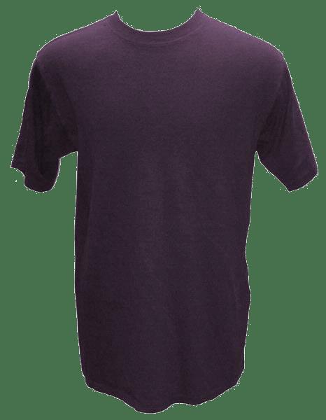 Mens Blank Hemp T Shirt - Purple