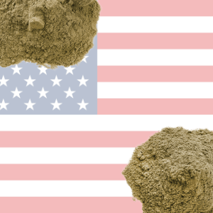 American Protein