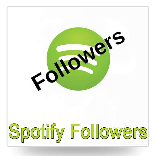 Spotify Followers