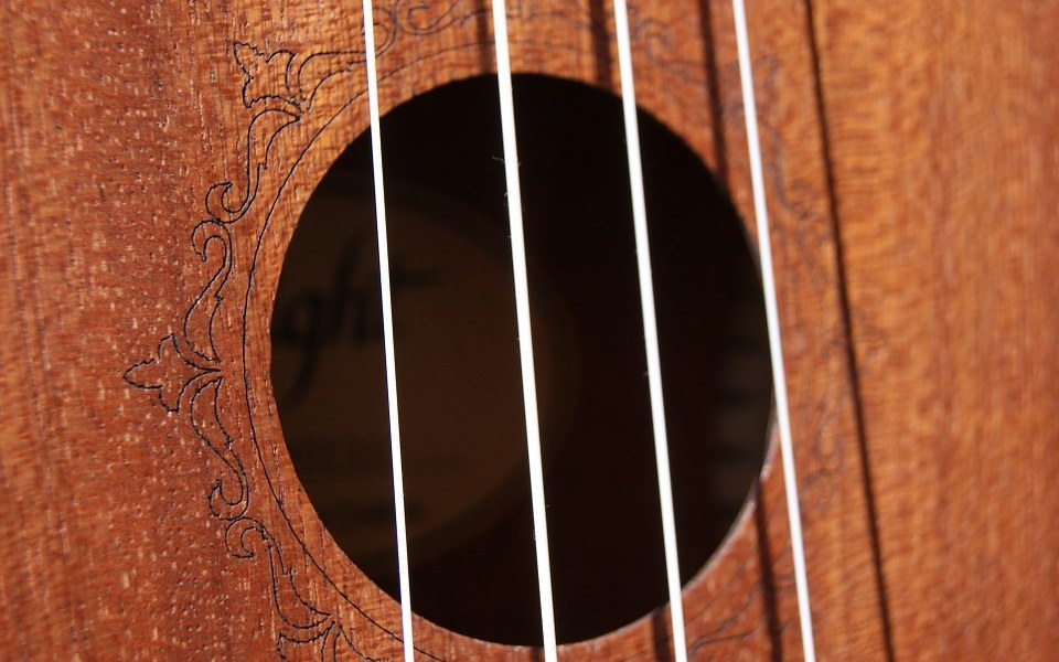 Best Tenor Ukulele Reviews – Top 5 in the Market for 2020