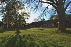 Bull-August gård, gräsmattan och gunga
