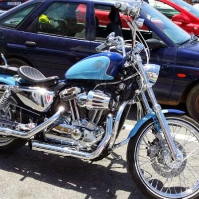 Harley 72 (12)