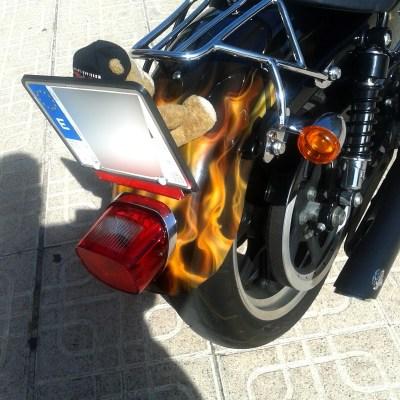 Harley Fuego (10)
