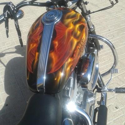 Harley Fuego (9)
