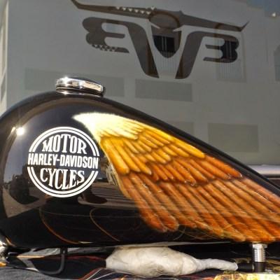 Harley Manu (3)