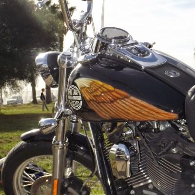 Harley Manu (5)