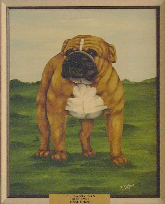 Best of Breed: Ch. Sassy Dan
