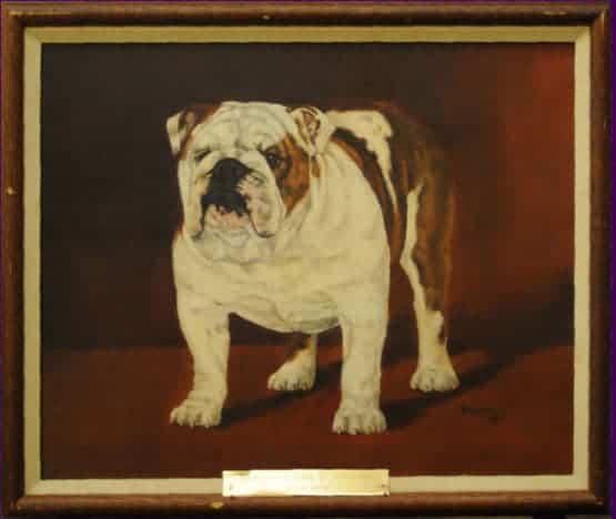 Best of Breed: Ch. Dingman's Hunk of Hetherbull