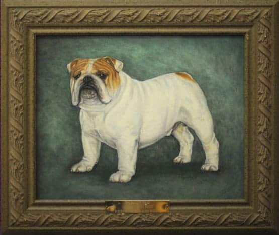 Best of Breed: CH Lord Timothy Scott