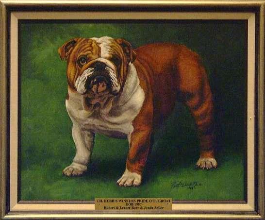 Best of Breed: CH Kerr's Winston Pride O'Tugboat