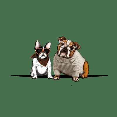 Collection Bulldogs