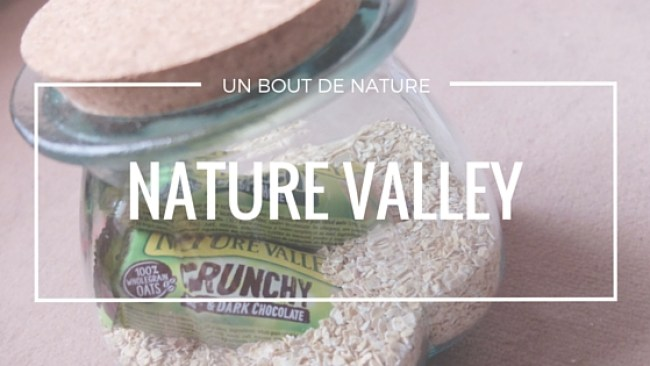 nature-valley-cereales - copie