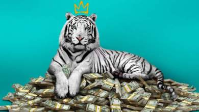 Photo of Movie: The White Tiger (2021)