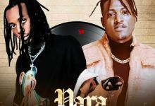 Photo of Music: Molly Nelson Ft. Idowest – Para