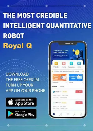 royal q robot review