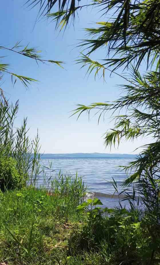 Badestelle Bolsenasee