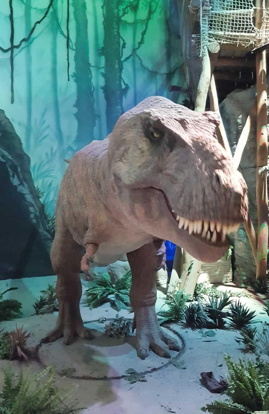 Der T-Rex im Odysseum Köln