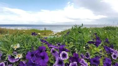 Golspie, Sutherland, Schottland