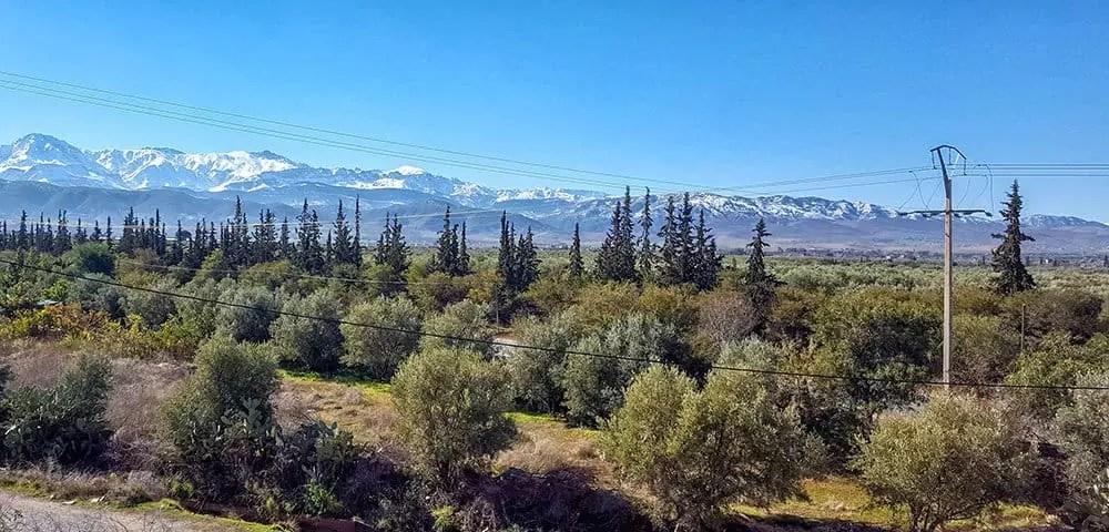 Tagestour von Marrakesch - auf dem Weg ins Atlasgebirge