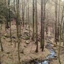 Wanderung Muldental (1)