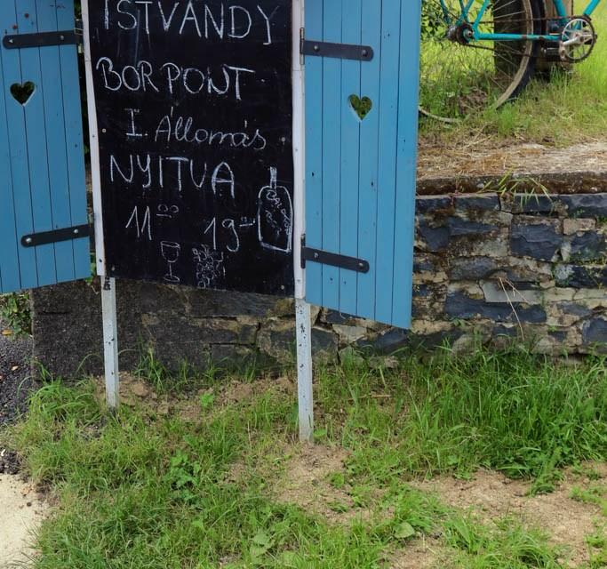Weinverkostung Ungarn