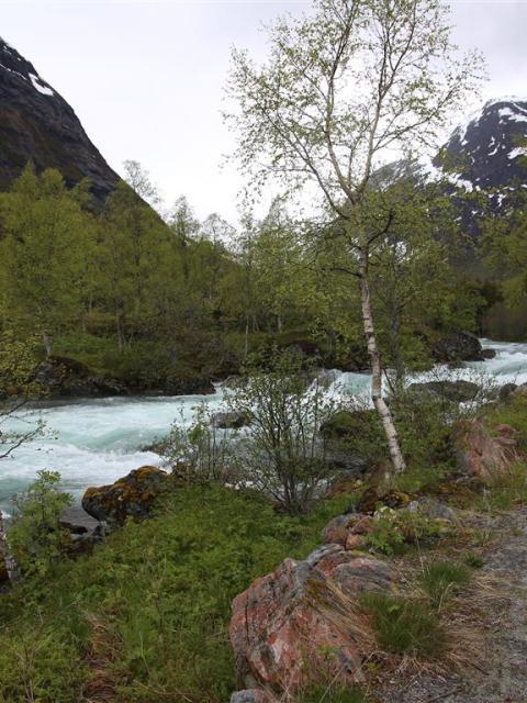 Stellplatz Norwegen Trollstigen