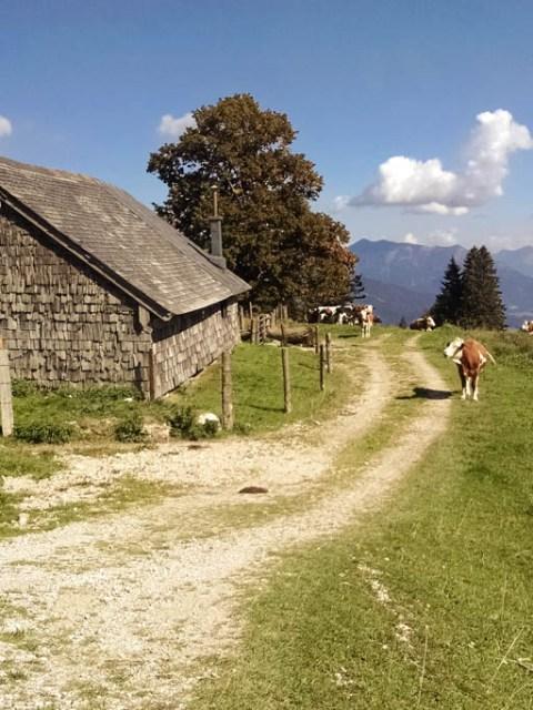 Bergalm Österreich