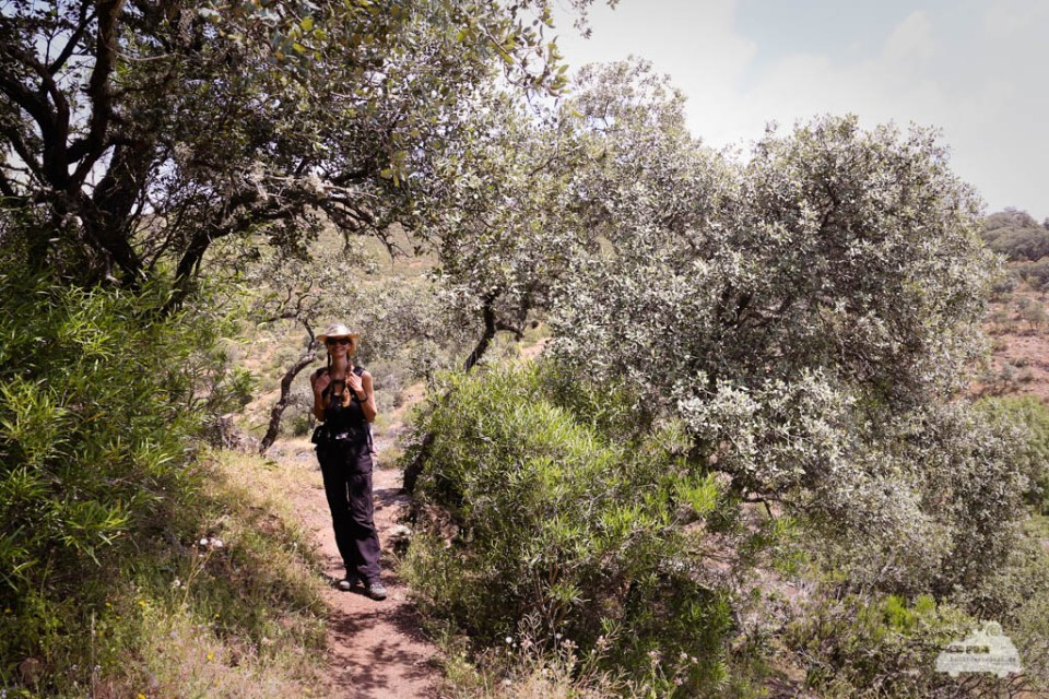 Spanien Nationalpark Monfragüe