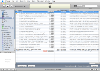 Choose which podcasts to download into iTunes (they'll be uploaded onto your iPod next time you synch it)