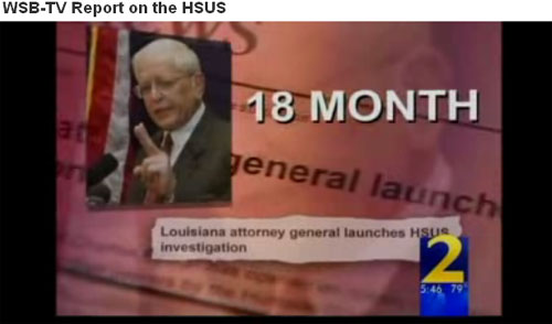 HSUS is investigated by Louisiana