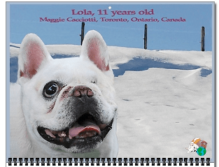 Lola, Bullmarket Chiquita Lolita, is January's cover girl.