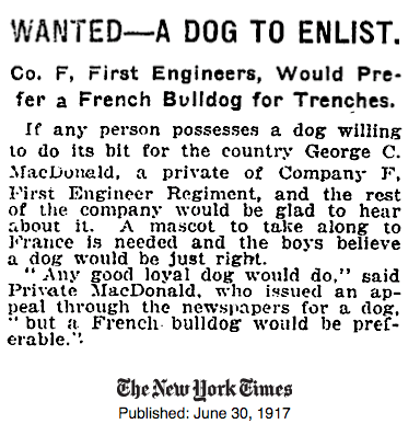 Wanted - A French Bulldog to enlist