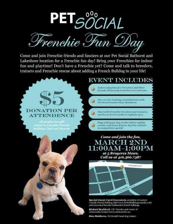 French Bulldog Fun Day at Pet Social in Toronto, Sunday March 2 11:00 am to 1:00 pm.