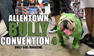 Bully Girl 174 A Community For Bully Breed Enthusiasts