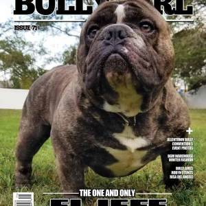 Bully Magazines