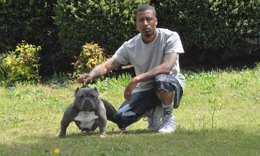 Swaggerville Exotic Bullies Exotic Bully Breeder Georgia