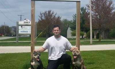 Chicago Bullies: American Bully Breeder | Illinois