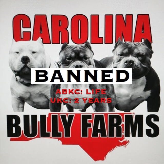 Carolina Bully Farms Receives UKC Ban