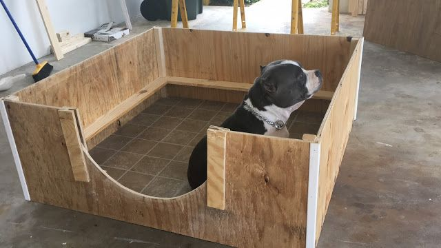 How to Create A Quick and Inexpensive Whelping Box