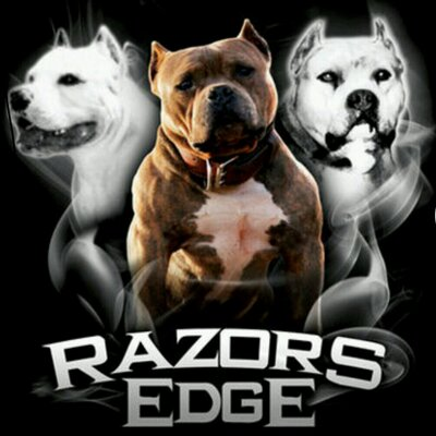 History Of The Razors Edge Bloodline