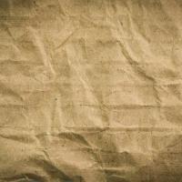 Разчетен ли е ръкописа на Войнич?