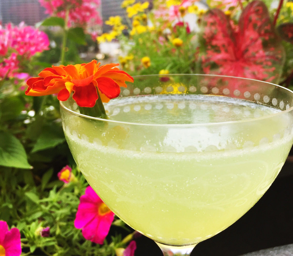 Featured-2017-Year-In-Review-Drink-at-Raised-Bar-Chicago-By-Bumble-and-Bustle