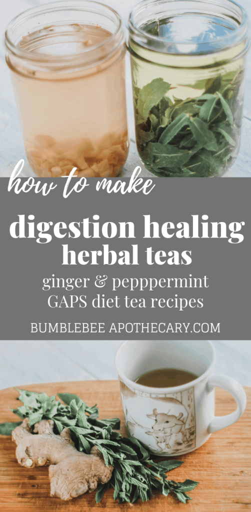 GAPS diet tea recipes   a tutorial showing how to make ginger and peppermint teas to help heal and soothe digestion #herbs #herbal #tea #gapsdiet #gaps #ginger #peppermint