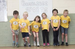 Bumblebee Sport Gallery Pic 126