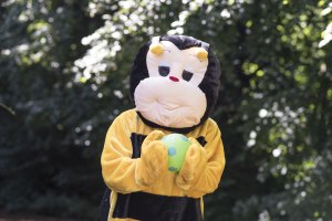 Bumblebee Sport Gallery Pic 08