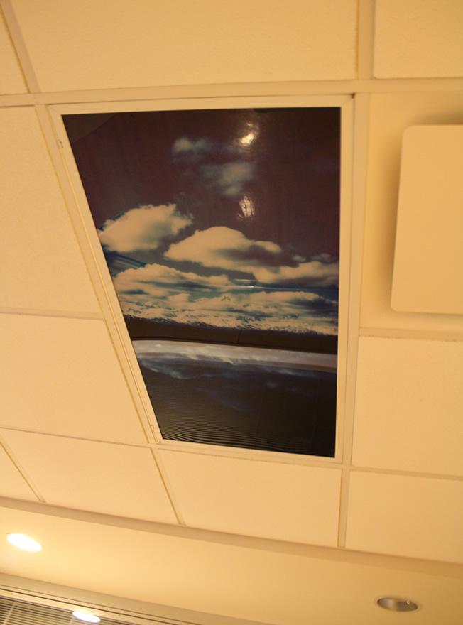 ceilingart