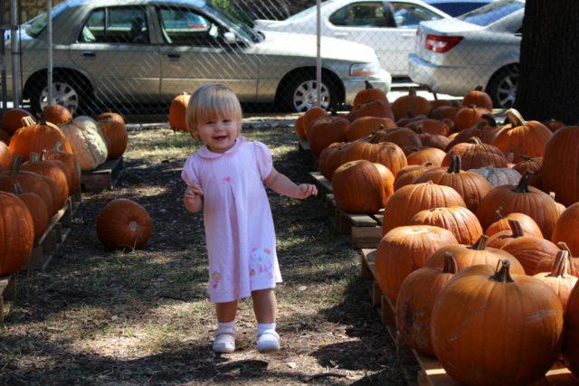 pumpkinpatchrunning1