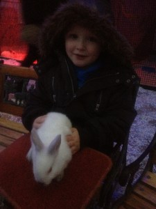 Pet a rabbit while you're there