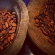 Roasted cacao (chocolate) beans might be the best smell in the world. I'm looking forward to spending a few weekends on the organic farm that grows them to learn more about chocolate and coffee harvests.