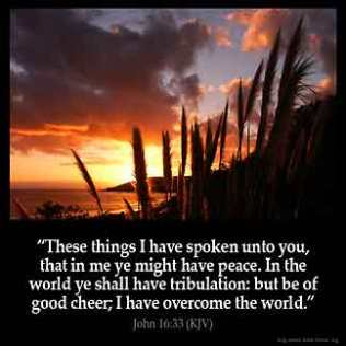 John_16-33: These things I have spoken unto you, that in me ye might have peace. In the world ye shall have tribulation: but be of good cheer; I have overcome the world